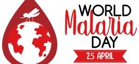 The World Malaria Day 2021 – Reaching the zero malaria target
