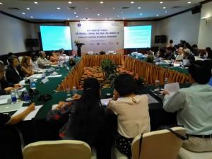 Hội thảo kỷ thuật về PCTHTL do Quỹ PCTHTL Việt Nam tổ chức với sự tham gia và hỗ trợ của nhiều tổ chức trong nước và ngoài nước tại Hà Nội ngày 9 tháng 7 năm 2019 tại khách sạn Fortuna Hà Nội.